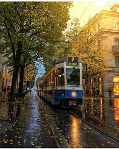 Zürich after autumn rain, Switzerland Places To Travel, Places To See, Places Around The World, Around The Worlds, Switzerland Vacation, Alps Switzerland, Winterthur, Zermatt, Where To Go