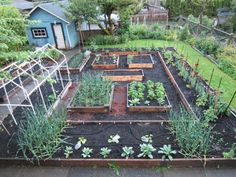Love this garden layout. by by Maison Miller - wish I had the room where I am putting mine.