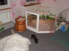 die 54 besten bilder von zum selber bauen kaninchen stall co. Black Bedroom Furniture Sets. Home Design Ideas