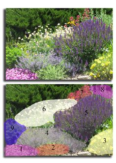 214 Best Zone 5b Landscaping-Gardening images   Garden ...