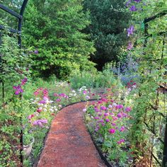A Garden Reborn - FineGardening - this couple completely redid their garden after construction destroyed it. Video with plant id's in link.
