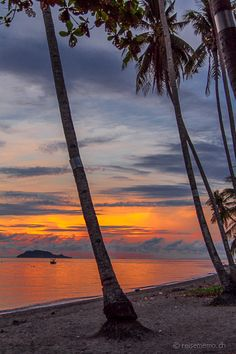 Apo Island on sunrise, Philippines. Best Sunset, Luxury Spa, Aesthetic Pastel Wallpaper, Resort Spa, Mother Nature, Places To See, Philippines, Caribbean, Around The Worlds