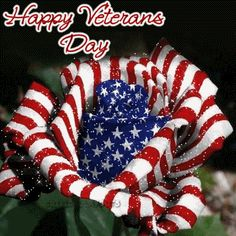 Happy Veterans Day - Imagenes y Carteles