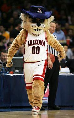 University of Arizona mascot <3<3 Wilbur Wildcat!!!  Visit SPIRITGEARcentral.com for UA accessories