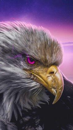 Golden Eagle Predator - IPhone Wallpapers