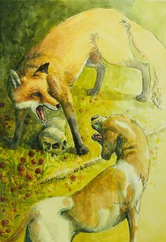 Teumessian fox and Laelaps- Greek myth: a gigantic fox (child of echidna) that could never be caught. was sent to terrorize a town by orders of Dyonisus. Laelaps, the dog who always caught its prey was sent after it by Amphitryon. Zeus, noticing this paradox, turned them both to stone and threw them into the sky making them the constellations Canis Major (Laelaps) and Canis Minor (teumessian fox).