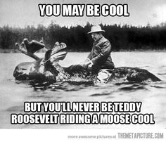 Teddy Roosevelt riding a moose cool US Humor - Funny pictures, Quotes, Pics, Photos, Images on imgfave I Smile, Make Me Smile, Doug Funnie, Funny Commercials, By Any Means Necessary, She Wolf, Demotivational Posters, Haha Funny, Funny Stuff