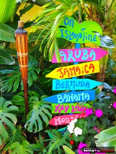 Gonna make this sign for next to our pool... :). Or perhaps Jimmy Buffett lyrics would be more appropriate at our house...