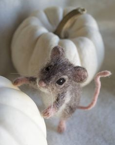 https://www.etsy.com/nl/listing/561162311/naald-vilten-mouse-poseable-realistisch?ref=shop_home_active_21