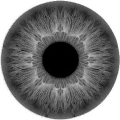 Zbrush, Eye Texture, Iris Eye, Eye Images, Modeling Tips, Dragon Eye, Model Face, Human Eye, Body Drawing