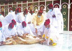 Roi Mohamed 6, King