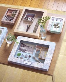 Preserve Vacation Memories in Shadow Boxes - Martha Stewart Crafts