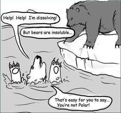 thatscienceguy:    Haha, a little science joke, ill be posting these occasionaly.  For those who do not get it, water is a polar molecule and therefore can only desolve other polar molecules, so it cant dissolve bears except for 'polar' bears.
