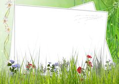 Green and White Transparent Frame with Field Flowers