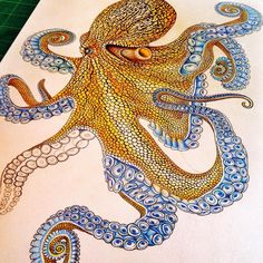005_Octopus2_progress.jpg (960×960)