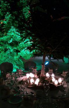 Christmas Wedding Decorations, Thessaloniki, Greece, Bouquet, Weddings, Design, Greece Country, Wedding Christmas Ornaments, Bouquet Of Flowers