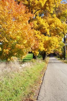 Fall in New England | New England Living