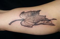 Artist: Bálint-Gudmon Alexandra #leaf #dotwork #leaftattoo #tattoo #dotworktattoo #leafdotwork #tattooed #budapesttattoo #renegadetattoo