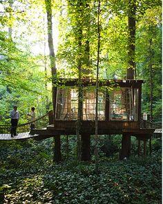 Detached room with suspension bridges