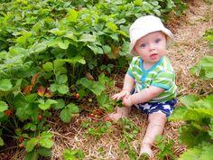Bébé Lounael, 8 mois, habillé par Finlange: short baby étoiles et combicourt rayé de Maxomorra (what else?)