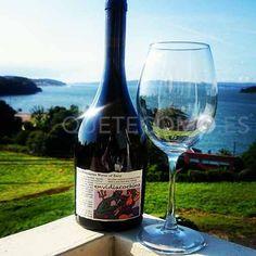 Selecto vino Envidia Cochina de Eladio Piñeiro | Restaurante A Cabana en Bergondo, A Coruña