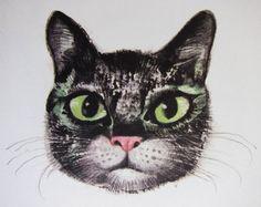 Cat face. Karel Franta vintage illustration. Czech illustrator of Animal Fairy Stores.