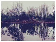 Природа в апреле. Деревня Кулеватово.