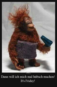 I'm pretty confident this is not a real orangutan but a toy but its so cute Cute Baby Animals, Animals And Pets, Funny Animals, Smiling Animals, Wild Animals, Primates, Funny Animal Pictures, Cute Pictures, Amazing Pictures