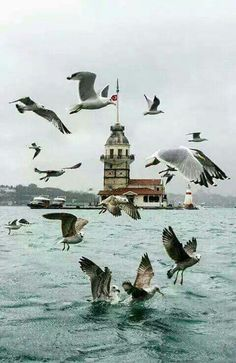 Holiday-in-Istanbul-Turkey - The World Travel Istanbul City, Istanbul Travel, Places To Travel, Places To Visit, Turkey Holidays, Turkey Photos, Las Vegas Hotels, Turkey Travel, Beautiful Places