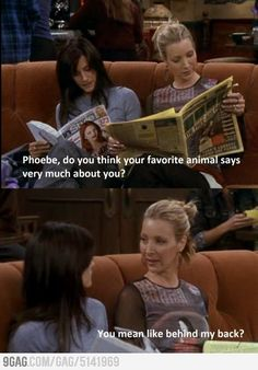 Monica: Phoebe, do you think your favorite animal says very much about you? Phoebe: You mean like behind my back? Friends TV show quotes