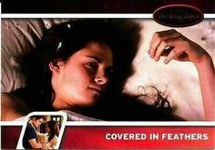#TwilightSaga #BreakingDawn Part 1 - Series 2: Covered In Feathers #11
