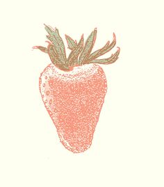 © Peg Nocciolino 2012  letterpress fruits and veggies series beginning...