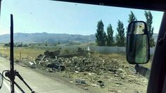 Photo by Chad Nuxoll. A semi hauling bees crashed on Interstate 15 north of Pocatello on Thursday, September 10, releasing thousands of them into nearby neighborhoods.