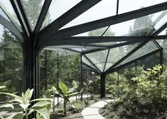 Shade structure, buy greenhouse, greenhouse plans, greenhouse restaurant, v Architecture Design, Landscape Architecture, Landscape Design, Garden Design, Buy Greenhouse, Greenhouse Plans, Greenhouse Restaurant, Tree Structure, Shade Structure