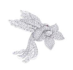 Broche Bird of Paradise de Graff http://www.vogue.fr/joaillerie/shopping/diaporama/broches-potiques/18889/carrousel#broche-bird-of-paradise-de-graff