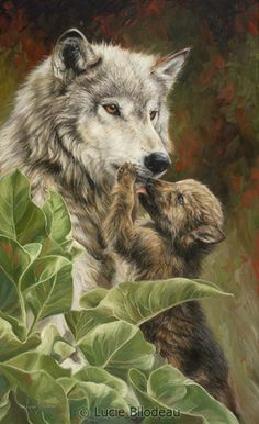 Precious Moment - wolf painting by Lucie Bilodeau