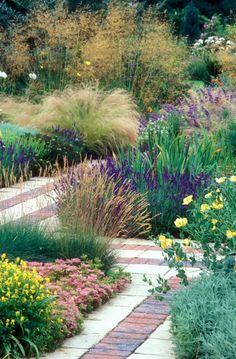 Cambridge University Botanic Garden   GardenVisit.com, the garden landscape guide