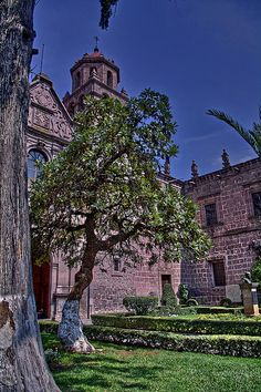 Morelia, Michoacan, Mexico (Why do I want to go here? The migration of the monarchs, stunning architecture, beautiful scenery, and loads of history!)