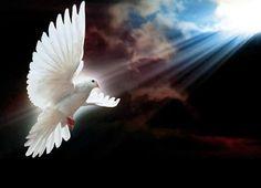 Angels Angel Engel Engelen Mystic
