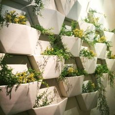 Wonderful Wallflowers: Vertical Gardening Supplies for Small Spaces | Apartment Therapy