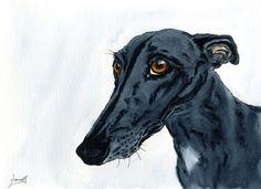 Dianne Heap - Hound Wind Hund