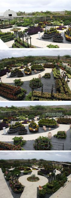 Fantastic Gardens was interested in creating a park-like setting for its new nursery located on the island of Aruba. The displays had a blend in with a park-like setting as well as be attractive, mobile, flexible, and adaptable to seasonal events and product features.