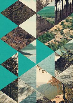 Forest and Mountain Range Graphic Art Collage