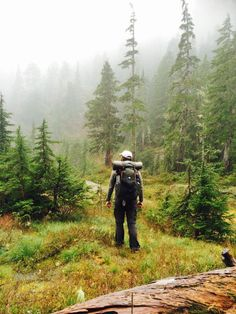 Lightweight Backpacking (Wilderness Hiking) Gear Tested in the Olympic Mountains Backpacking Light, Ultralight Backpacking, Camping, Olympic Mountains, Less Is More, Hiking Gear, Wilderness, Olympics, Trail