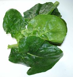 Spinach / épinard