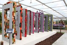 helps Interflora win Gold at the Chelsea Flower Show