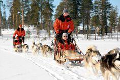 Een unieke gelegenheid om Fins Lapland te ontdekken. Je verblijft een week lang in Salla, ten noorden van de poolcirkel. Als hoogtepunt tijdens deze week trek je er op uit met goedgetrainde husky's voor een tweedaagse huskysafari in de ongerepte natuur van dit 'winterwonderland'. Bij deze reis zijn de heen- en terugvlucht inbegrepen en kun je de hele week gratis thermokleding gebruiken. Het vervoer van je skimateriaal kan gratis mee aan boord en je kunt gratis parkeren op Schiphol.