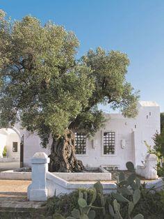 Rénovation : une ancienne ferme transformée en hôtel dans les Pouilles - Côté Maison