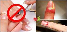Como remover as cutículas sem alicate em 5 minutos! Uma forma bem simples e sem dor - Receitas e Dicas Caseira