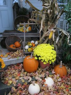 Fall curb appeal - For real estate at Penn State think HeritageRealtyPA.com